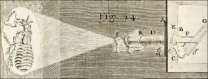 Microscopes solaires de projection dans Projections scientifiques microsolaire-01-300x115