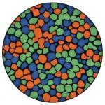 autochrome-13-150x150